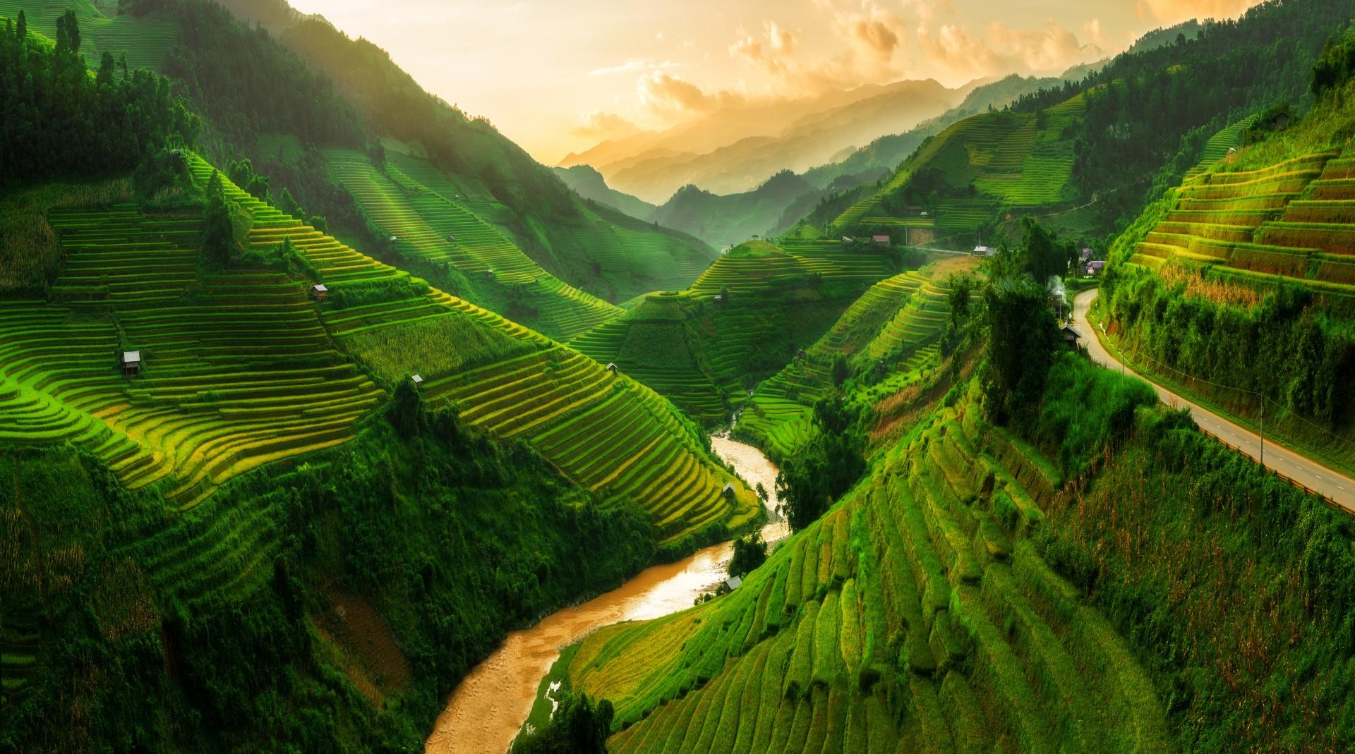 Mu-Cang-Chai-terraced-rice-field